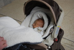 Rose Asleep in Her Stroller