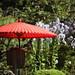 日中の和傘