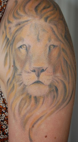 DSC_0008 · DSC_0050 · lion head tattoo