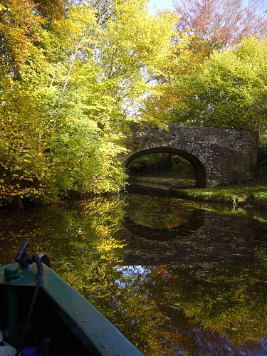 Trees on the Monmouthshire and Brecon Canal