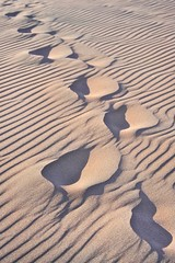 Slipping Away (bytegirl24) Tags: texture sand colorado footprints ripples greatsanddunesnationalpark