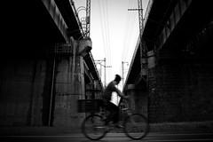 Time Trap (DSLR_MANIA) Tags: bridge blackandwhite bw bicycle train subway eos blackwhite crossing slow korea seoul shutter southkorea canonef2470mmf28lusm ef2470mmf28lusm    republickorea canonef2470mmf28usm eos1dmark3 canon1dmark3 zuidkorea  dslrmania canon1deos1d republiquedecoree poblachtnacoire