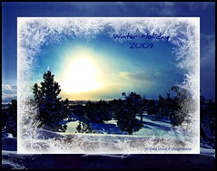 Winter Holiday! (mountainbeliever) Tags: christmas trees winter usa sun holiday cold southwest nature beauty sunshine evening scenery colorado skies snowy blues sunsets sunny frosty views sunburst rockymountains icy 2009 picnik fourcorners sunflare windowviews winterscenes southwestcolorado christmasholiday coloradoscenery winterholidays eveningskies coloradoviews mybackyardview coloradolandscapes wintersunsets holidayscenes coloradowinters
