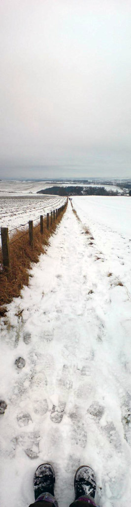 Snowy fields near Newport-on-Tay