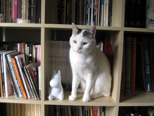 Moomin with Thor