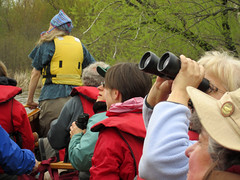 birding with the voyageurs