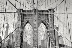The spiderweb (dog ma) Tags: brooklyn bridge manhattan nyc newyorkcity architecture bw blackandwhite dogma jodytrappephotography nikon d750 nikkor 24120mm