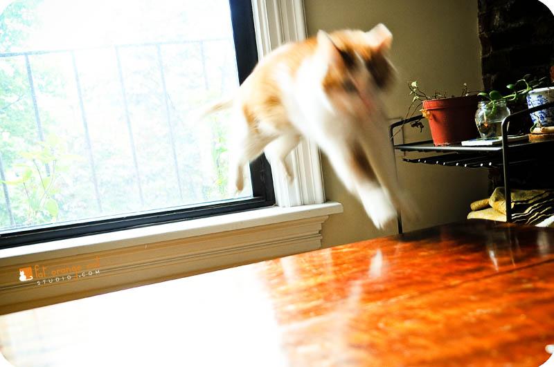 VanBuren jumps