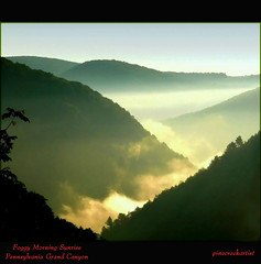 Pennsylvania Grand Canyon (pinecreekartist) Tags: chiaramonte pagrandcanyon wellsboropa pinecreekartist tiogacountypachiaramonte