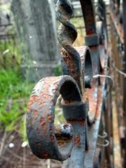 web for the dead (bobinette [...]) Tags: cemetery spider iron web rusty crusty fer araigne toile rouille cimetire forg