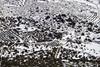 IMG_8085 (Miguel Angel Mora (GSi_PoweR)) Tags: españa snow andalucía carretera nieve nevada sunday bosque granada costadelsol domingo maroma málaga mountainroad meteorología axarquía puertomontaña zafarraya sierraalmijara cañosalcaiceria