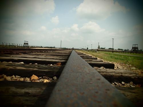 Birkenau track
