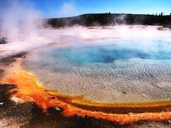Thermal Pool Colors, Yellowstone National Park, Wyoming (moonjazz) Tags: travel vacation orange usa hot color earth best creation minerals yellowstonenationalpark geography wyoming geology wilderness geyser thermal mywinners colorphotoaward
