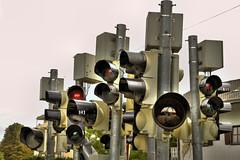 IMG_6898_tone (peter_dahlmann) Tags: munich mnchen lights traffic verkehr ampel