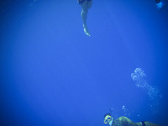Egypt II (Alex Worren) Tags: blue swimming egypt bubbles diving freediving snorkling