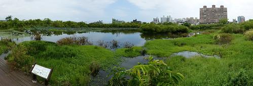 水生植物區全覽
