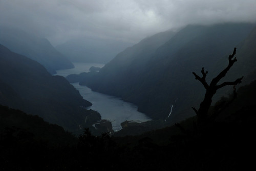 Doubtful Sound - Fiordland NP - South Island - New Zealand
