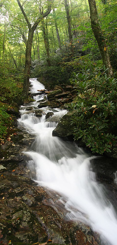 unnamed falls #2 on FR 63