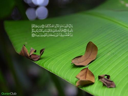 wallpaper islamic cartoon. wallpaper islamic cartoon. Banana Leaf Islamic Wallpaper,