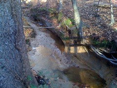 Calvary Church Creek