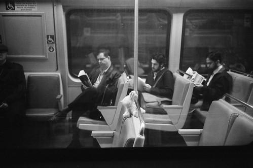 The Stuffed Passenger
