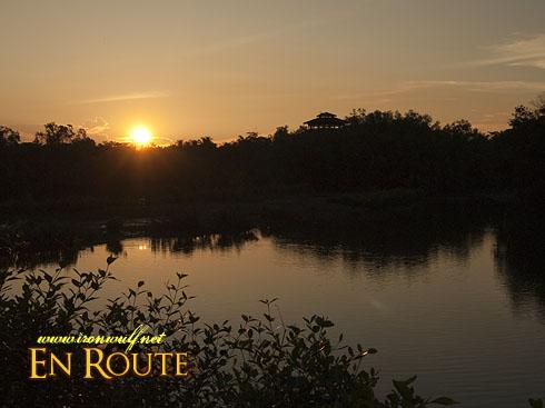 Sungei Buloh Sunset