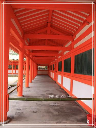 2009-12-11 京都 091 R