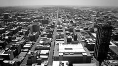 All Roads Lead to Johannesburg (scifilullabies) Tags: city urban blackandwhite bw panorama skyline buildings southafrica cityscape view johannesburg niksilverefexpro