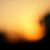 city sunset:  351/365 (helen sotiriadis) Tags: city sunset orange abstract black yellow canon gold published bokeh athens 365 canonef50mmf14usm canoneos40d toomanytribbles dslrmag