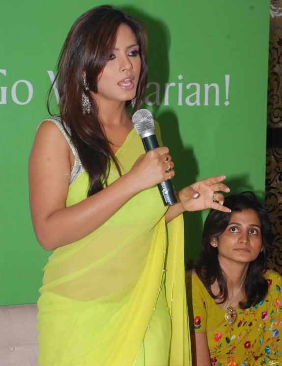Neetu-chandra-Green-Saree1