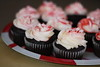 chocolate cupcakes with mint buttercream frosting (ginnerobot) Tags: christmas cute recipe cupcakes baking chocolate tasty homemade frosting redandwhite bakedgoods candycanes buttercream mintfrosting
