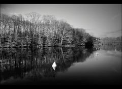 La Vienne en hiver (...::: Antman :::...) Tags: winter france river blackwhite hiver rivire vienne noirblanc lepalais hautevienne canoneos450d