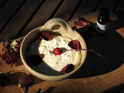 Organic Rosehip & Aloe Cream
