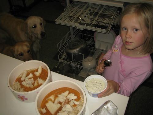 Christy organising the dogs dinner