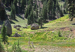 20090829 Lassen Volcanic Rocks