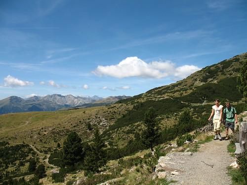 Der Panoramaweg startet von der Bergstation des Skigebiets Reinswald und ist umgeben von den typischen Latschenkiefernwäldern