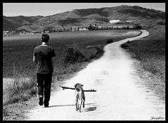 Paseando... by juanfree (juanfree photos) Tags: santa bw blancoynegro perpetua valles gallecs mollet juanfree mogoda miradafavorita