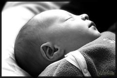 Noah (Vision d'Esprit) Tags: blackandwhite baby noiretblanc bb nouveaun