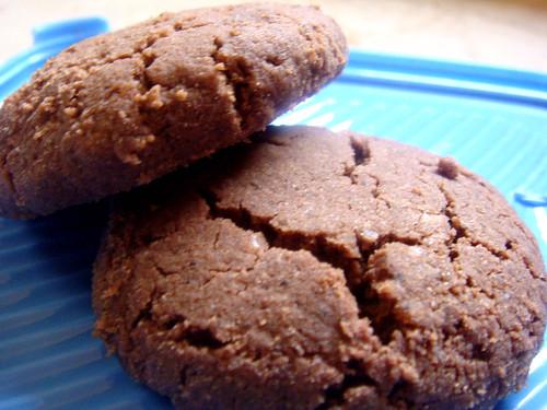 Nigella Lawson S Chocolate Biscuits Sandy Goodness
