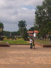 UG-legon-view from lib (Open.Michigan) Tags: ghana 2009 ug