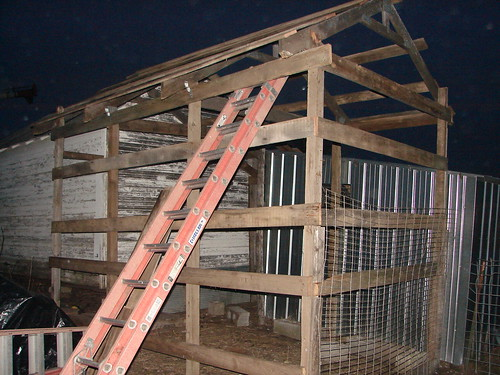 Progress On The Bird Cage...