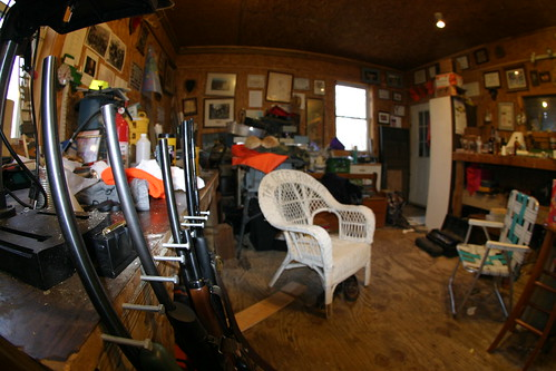 The guns in the shed