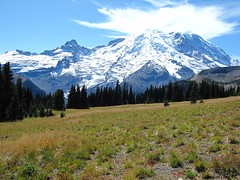 BG Guests - Mt Rainier -90 (Meggy Cline) Tags: bulgarian
