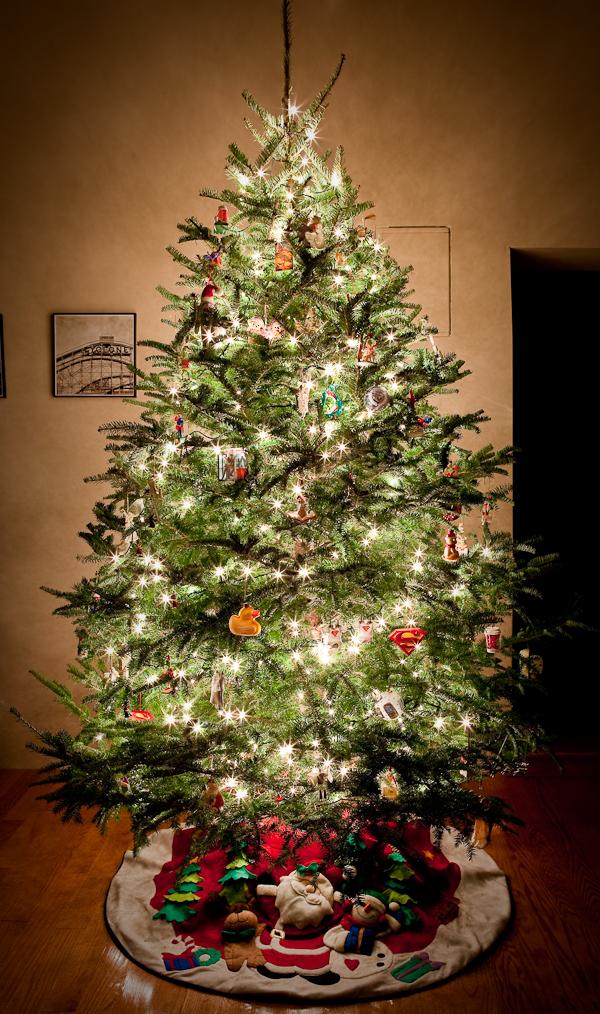Christmas_Tree_2009