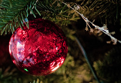 Christmas Tree Decorations (photomato) Tags: christmas xmas holiday tree bulb lights tn decoration grand ornaments fir trimming c9 c7