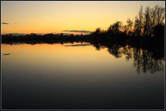 Campogalliano ( IT ) (maurorobi66) Tags: lake field forest landscape lago meadow swamp campo prato palude foresta campi campogalliano