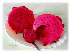 Hylocereus polyrhizus (Dragonfruit, Red Pitaya, Strawberry Pear), with dark red flesh or pulp