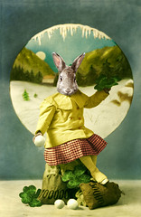 Merry Christmas (Martine Roch) Tags: christmas winter holiday money rabbit animal happy surreal newyear card snowball surrealist wish 2010 manray petitechose martineroch flypapertextures