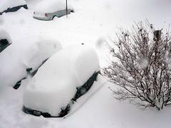 snow-car2