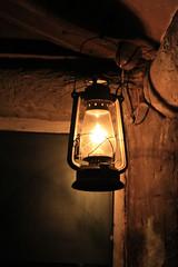 Singapore Night Safari (Nir Sinay) Tags: singapore 2010 lightroom nightsafari canonef24105mmf4lisusm canoneos7d oldstylelamp